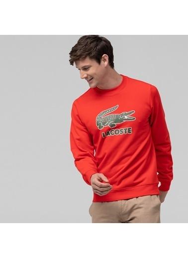 Lacoste Sweatshirt Kırmızı